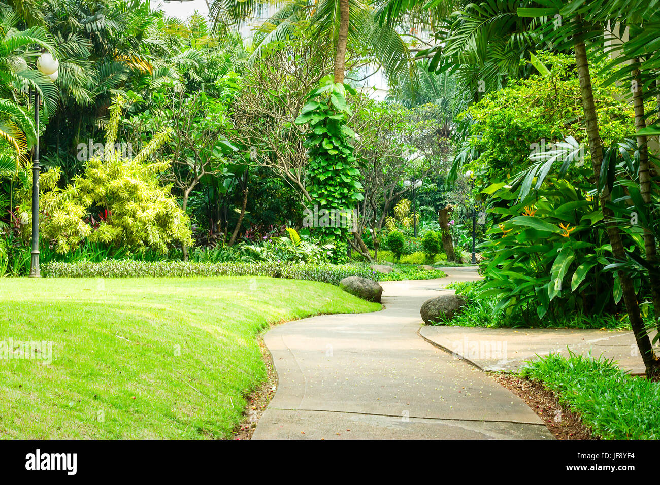 Beautiful green park with concrete winding path for pedestrians. The park is full of various tropical plants from - Stock Image