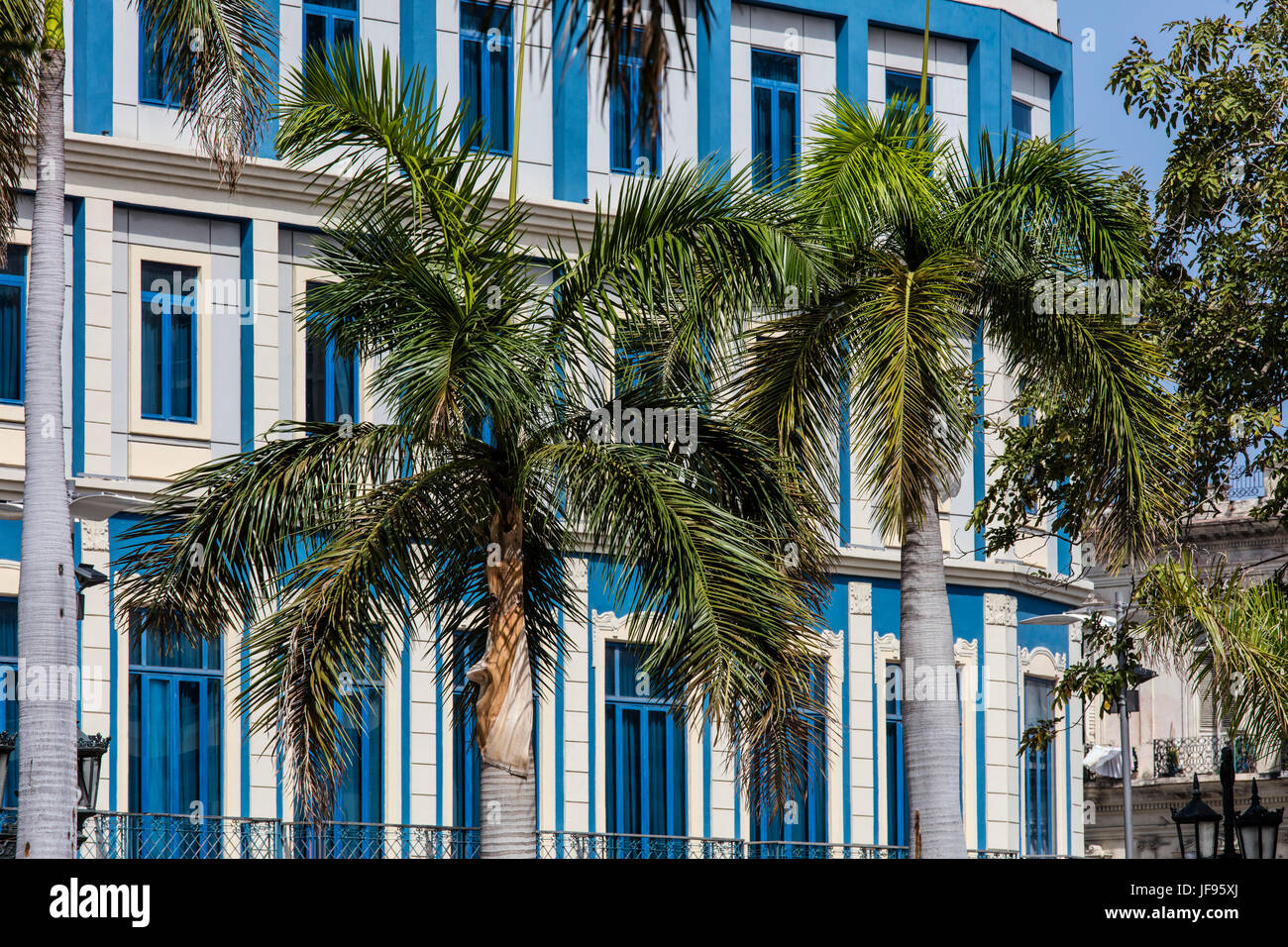 Palm trees and classic architecture - HAVANA, CUBA Stock Photo