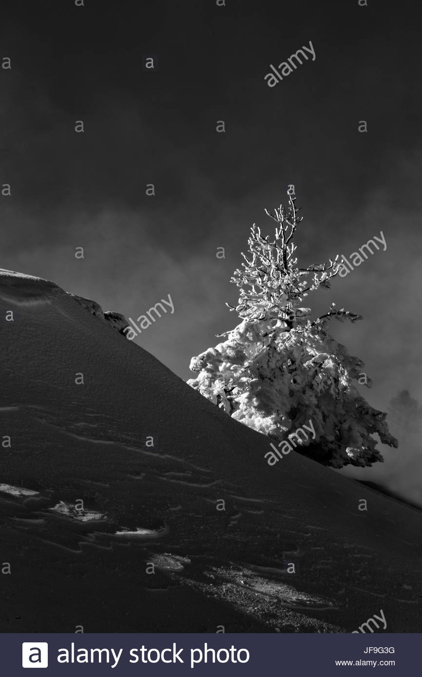 Dramatic lighting highlights a snowy landscape. - Stock Image
