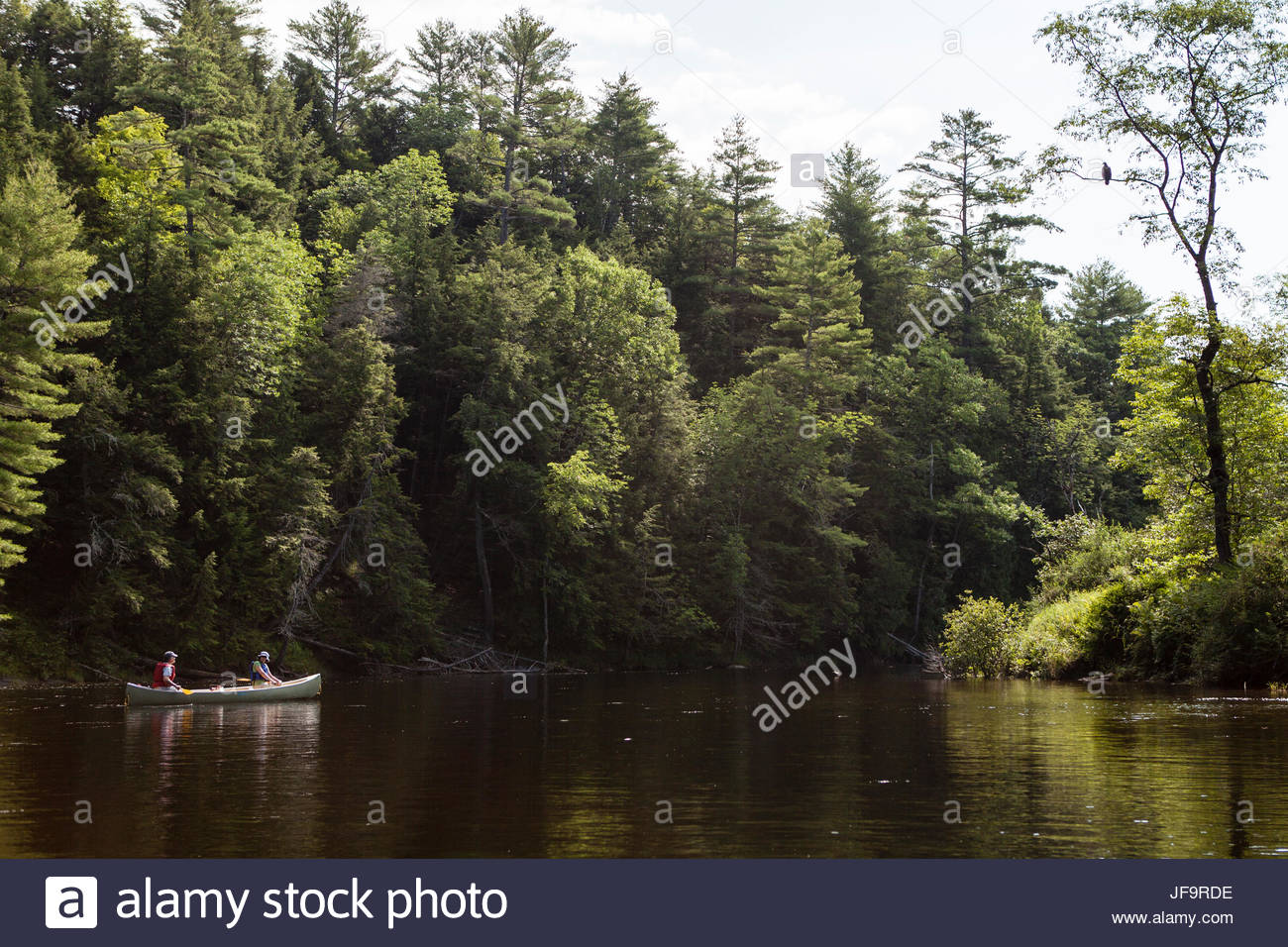 Two people canoe along the Kennebec River in Maine. - Stock Image