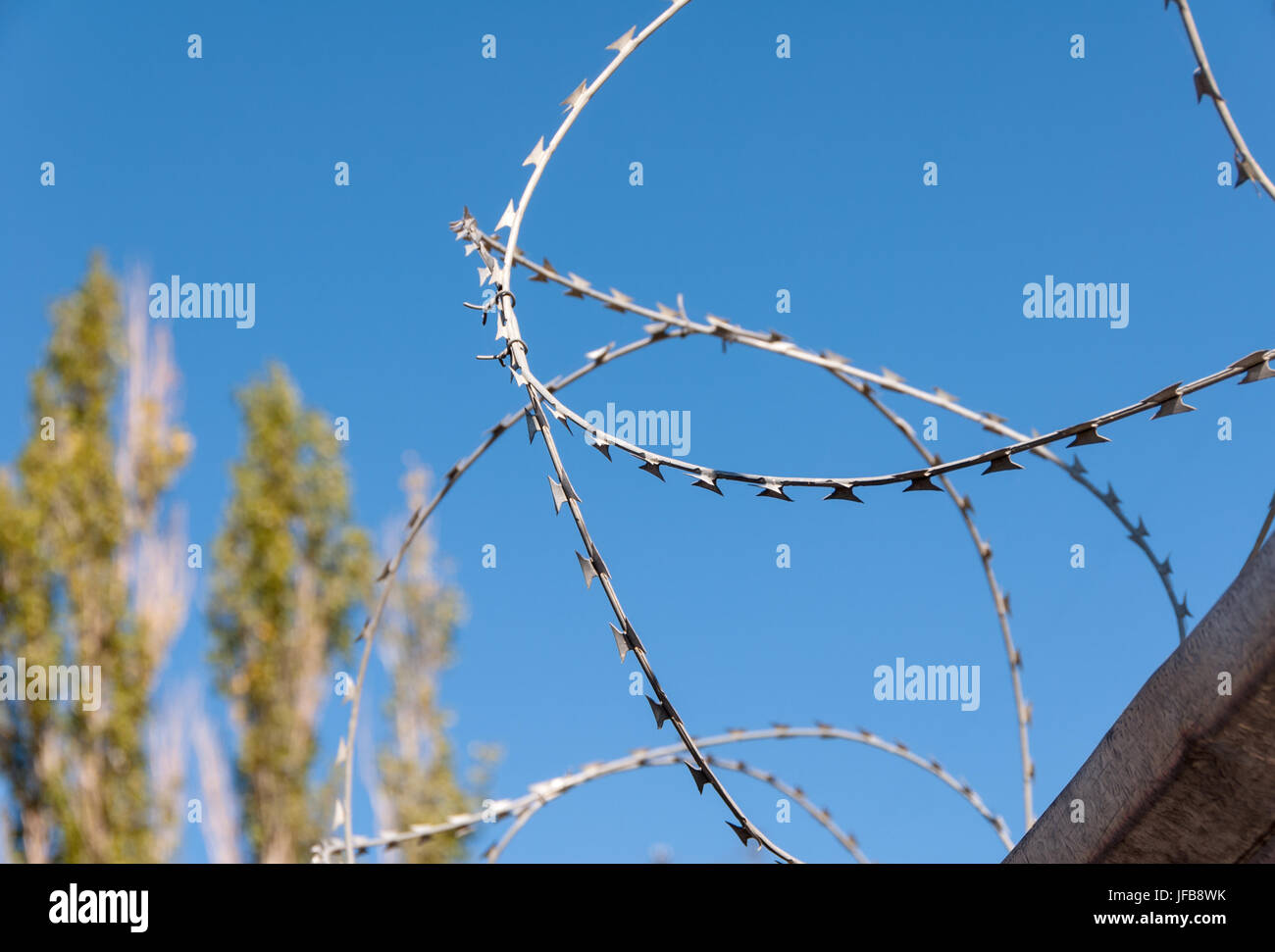 Barbed wire against the blue sky - Stock Image