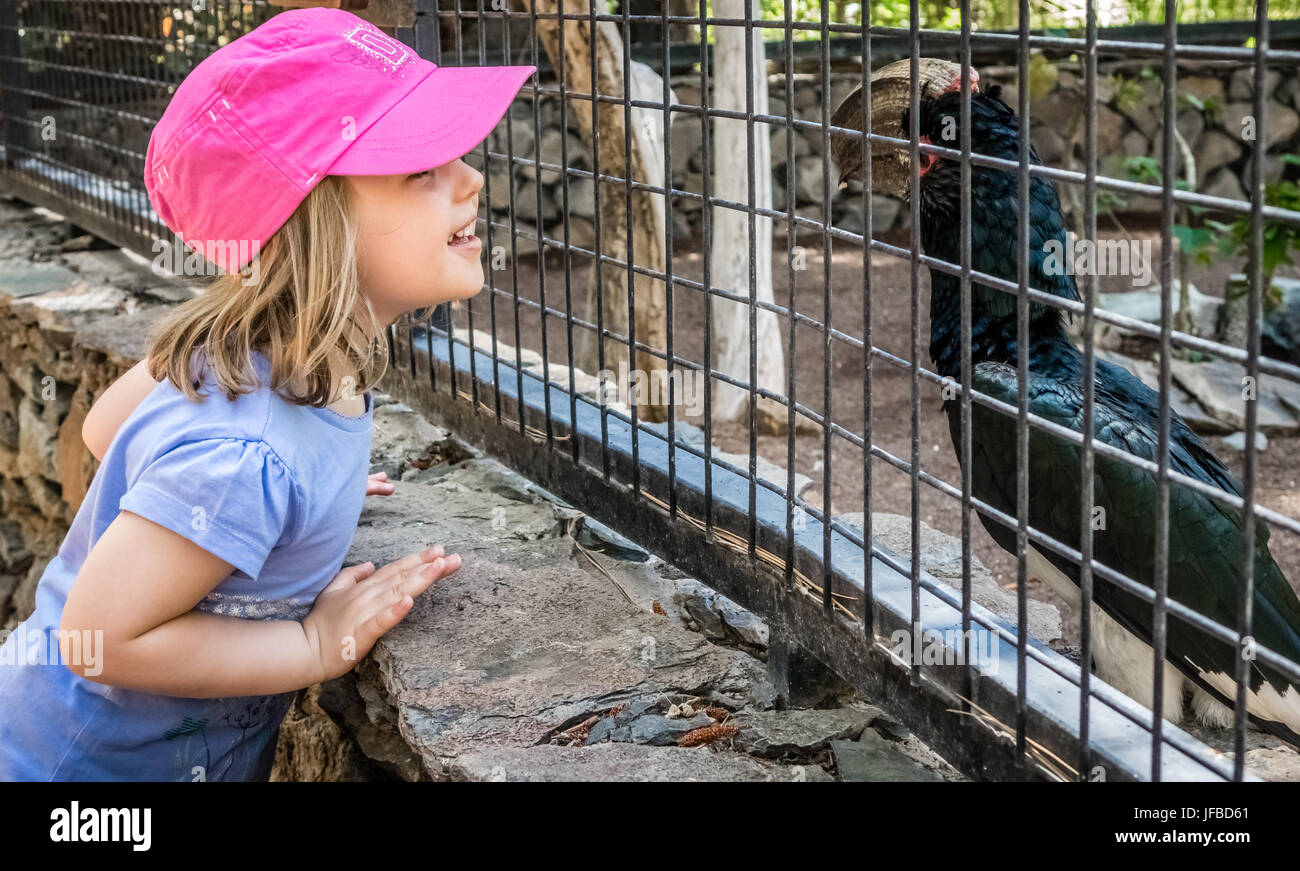Girl in the zoo - Stock Image