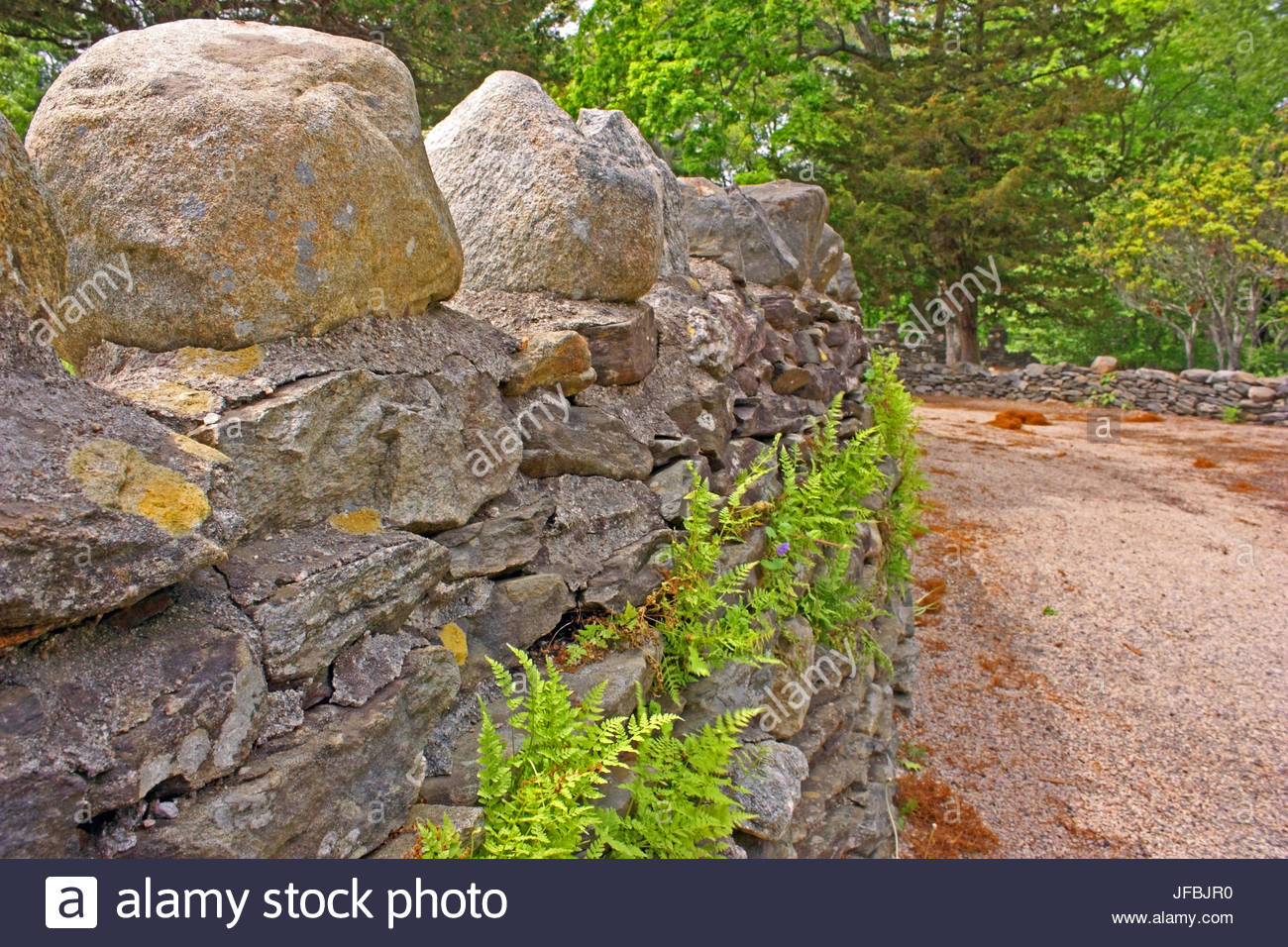 A stone wall with ferns borders the entrance road to Gillette Castle State Park. - Stock Image