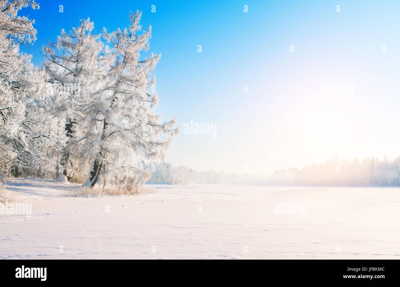 Winter park in snow Stock Photo