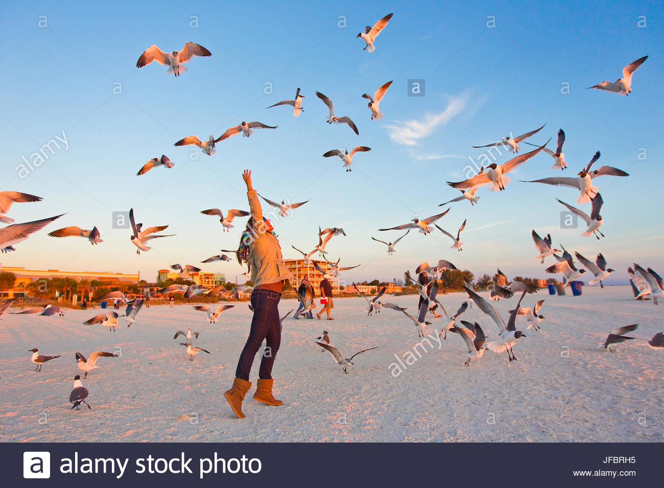A woman reaches for a flock of birds as they fly overhead at Treasure Island Beach in Florida. - Stock Image