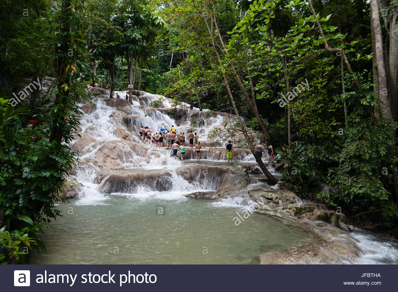 Tourists climbing the Dunn's River falls in a lush tropical landscape. - Stock Image