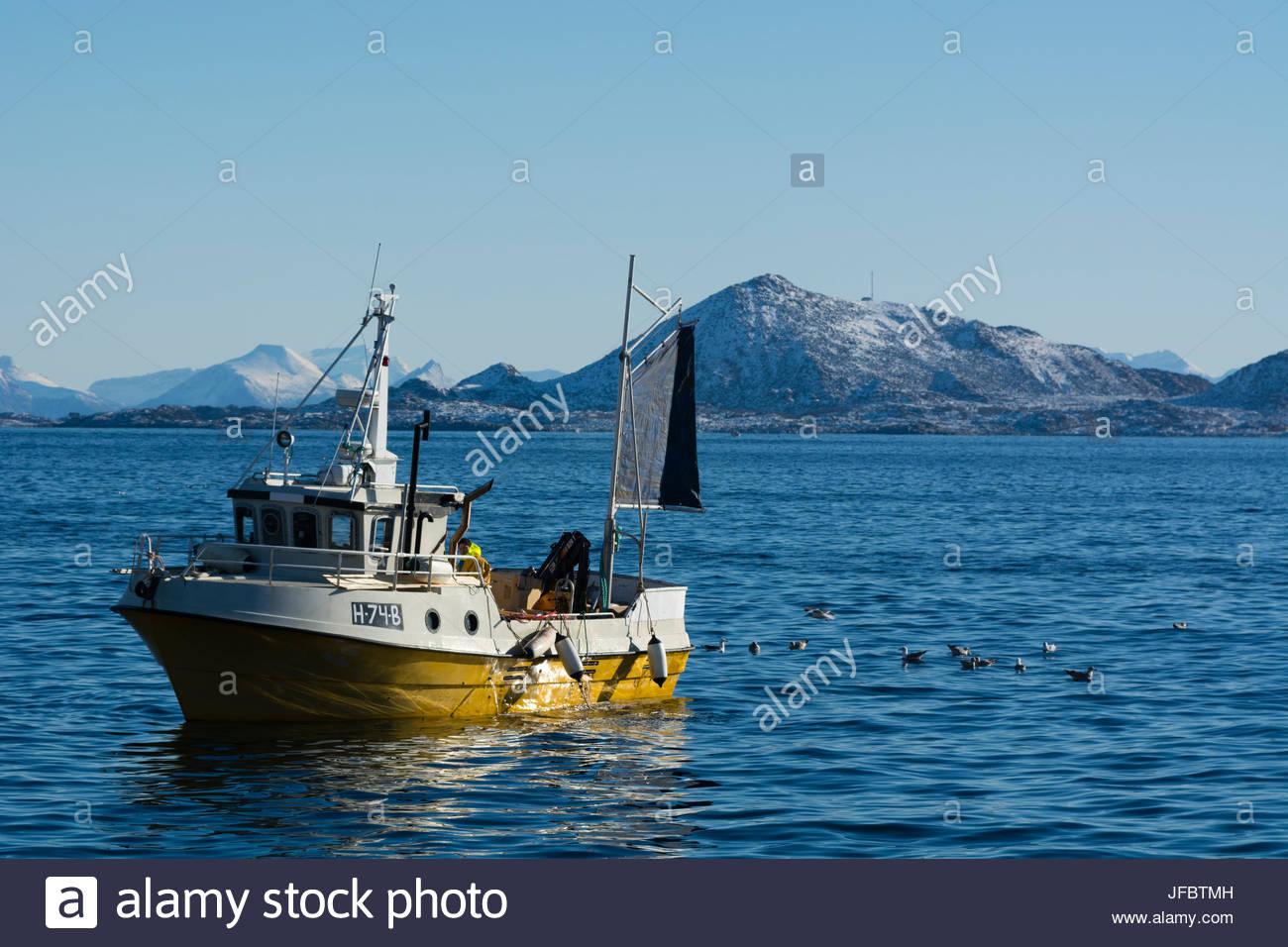 A fishing boat in Svolvaer Bay. - Stock Image