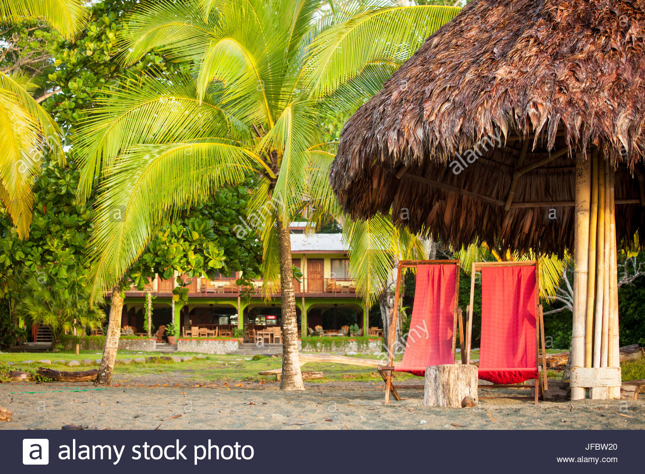 Lounge chairs, palm trees, and a thatch roof in a relaxing tropical scenic. - Stock Image