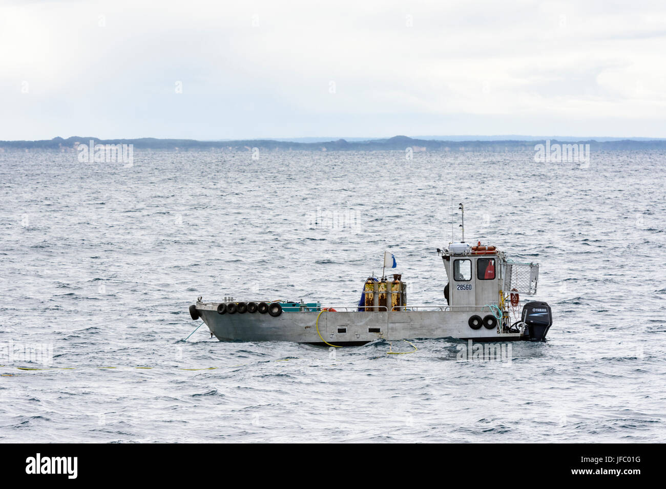 A small dive vessel used in the wild farming of Abalone shellfish in Flinders Bay, off the coast of Augusta, Western - Stock Image