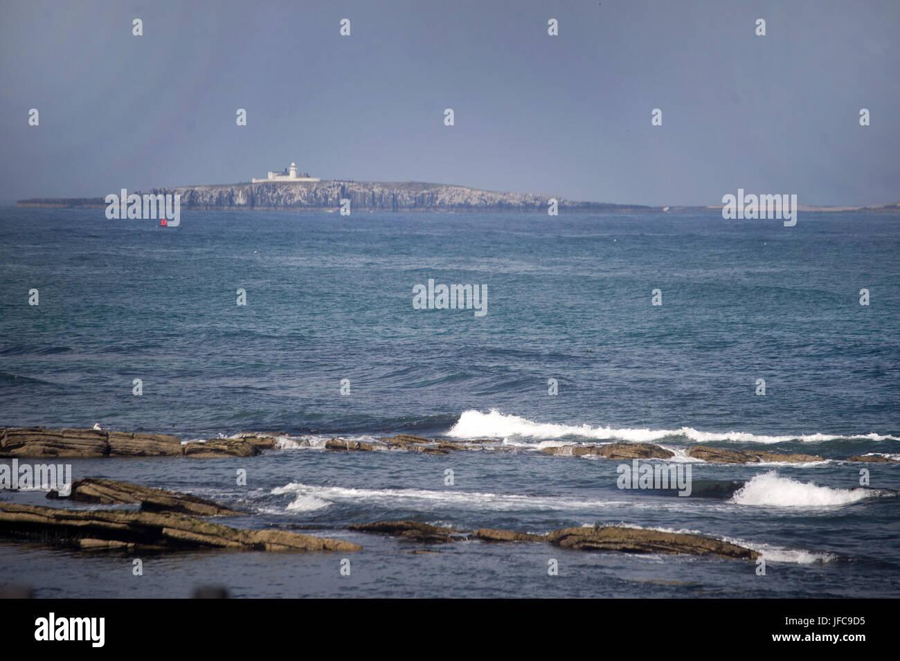 Farne Islands Stock Photo