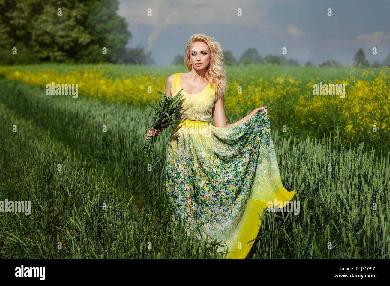 Beautiful blonde girl standing in a field with ears of corn in his hand. - Stock Image