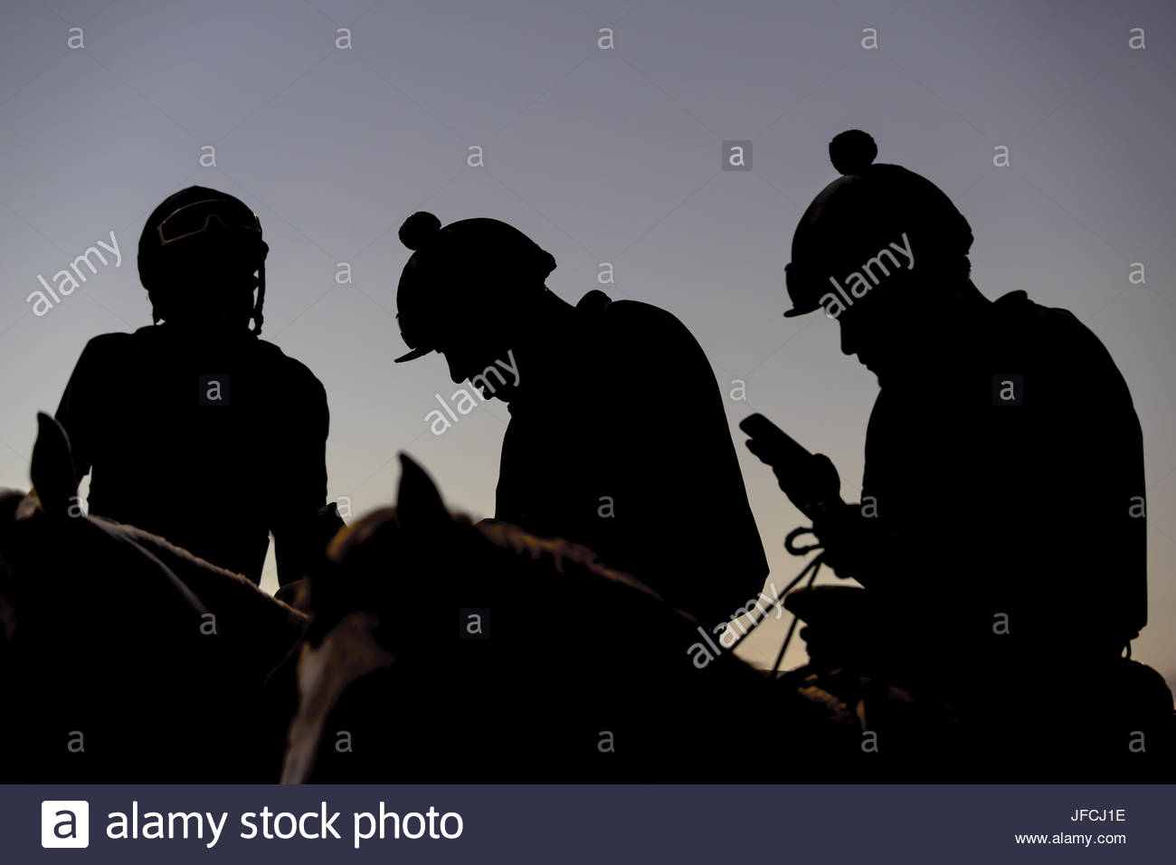 Competitive Horse Racing - Stock Image