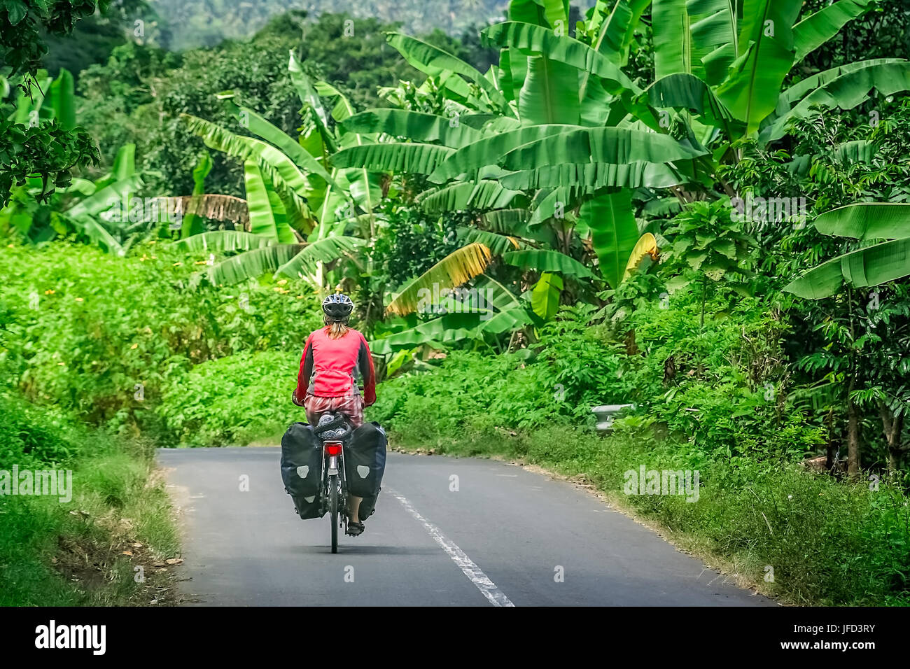 Female cyclist cycling through tropics in Lombok, Indonesia - Stock Image