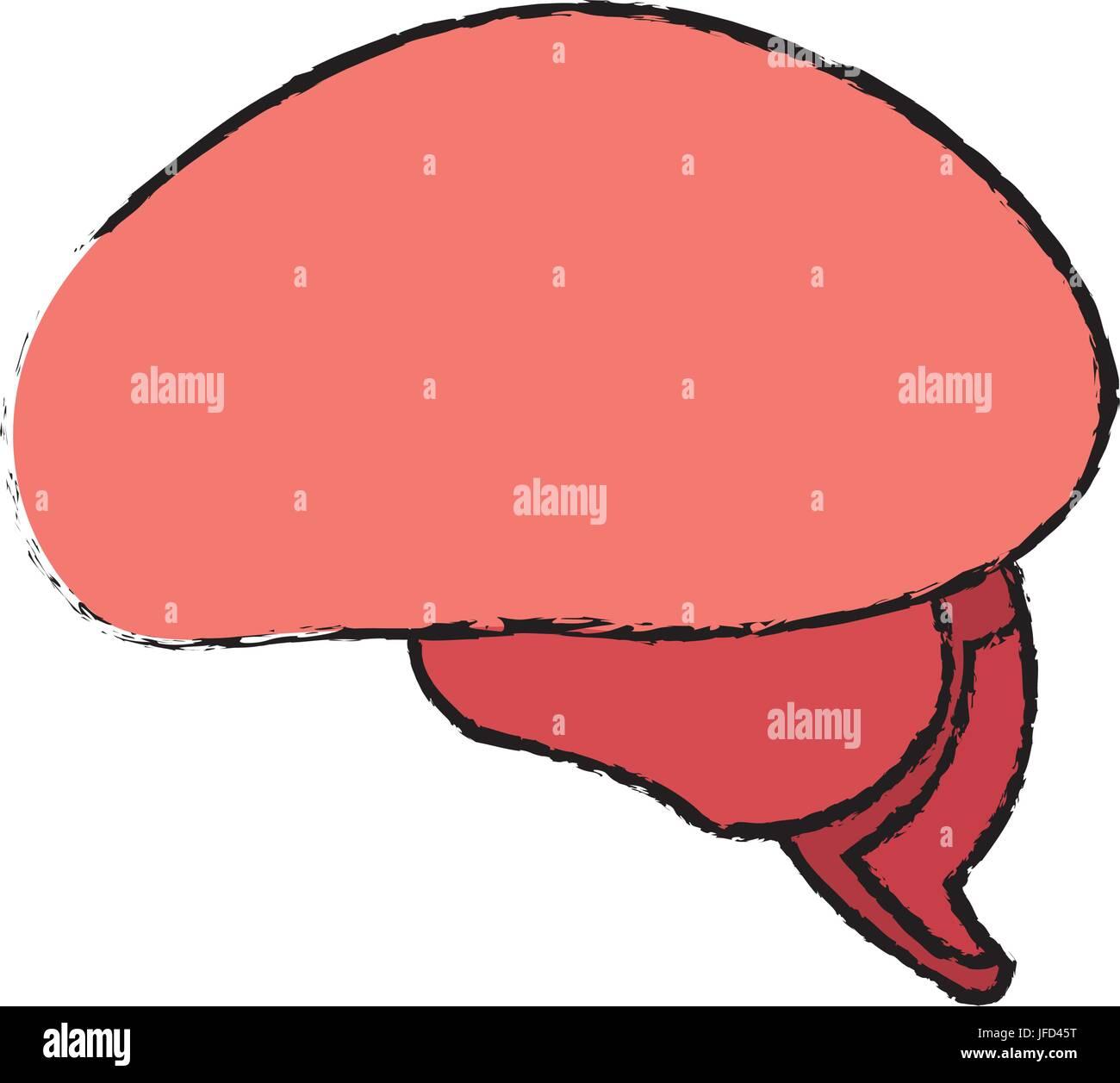 brain human healthy memory mind icon - Stock Vector