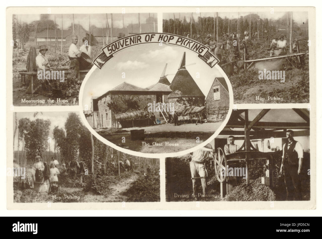 Multi-view Souvenir postcard depicting Kentish hop picking, the Oast House, measuring the hops, drying and pressing. - Stock Image