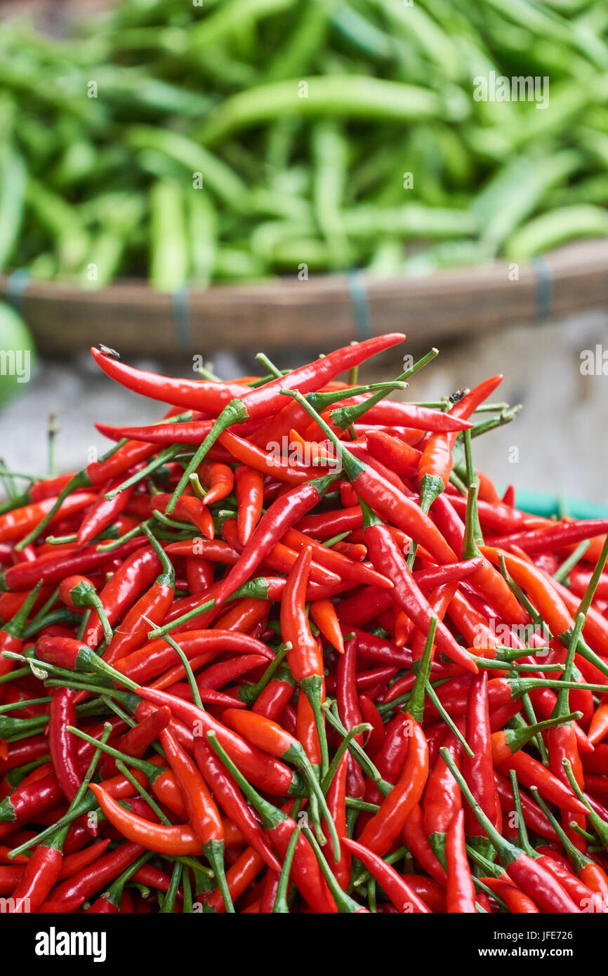 Fresh red chili peppers close up with green peppers in the background blured. Cooking ingredients. Vertical. - Stock Image