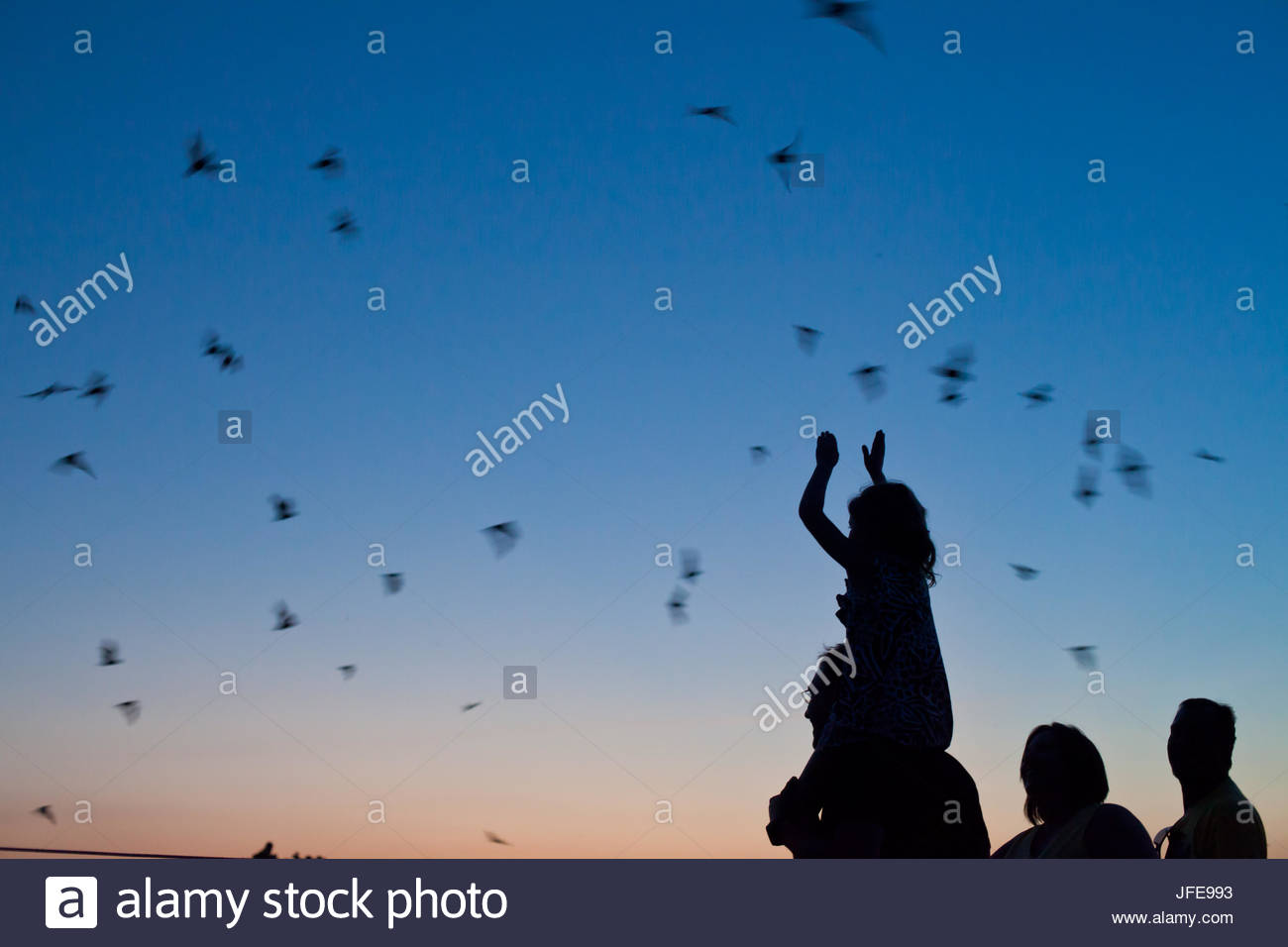 Silhouetted onlookers watch as bats emerge from a cave at sunset. - Stock Image