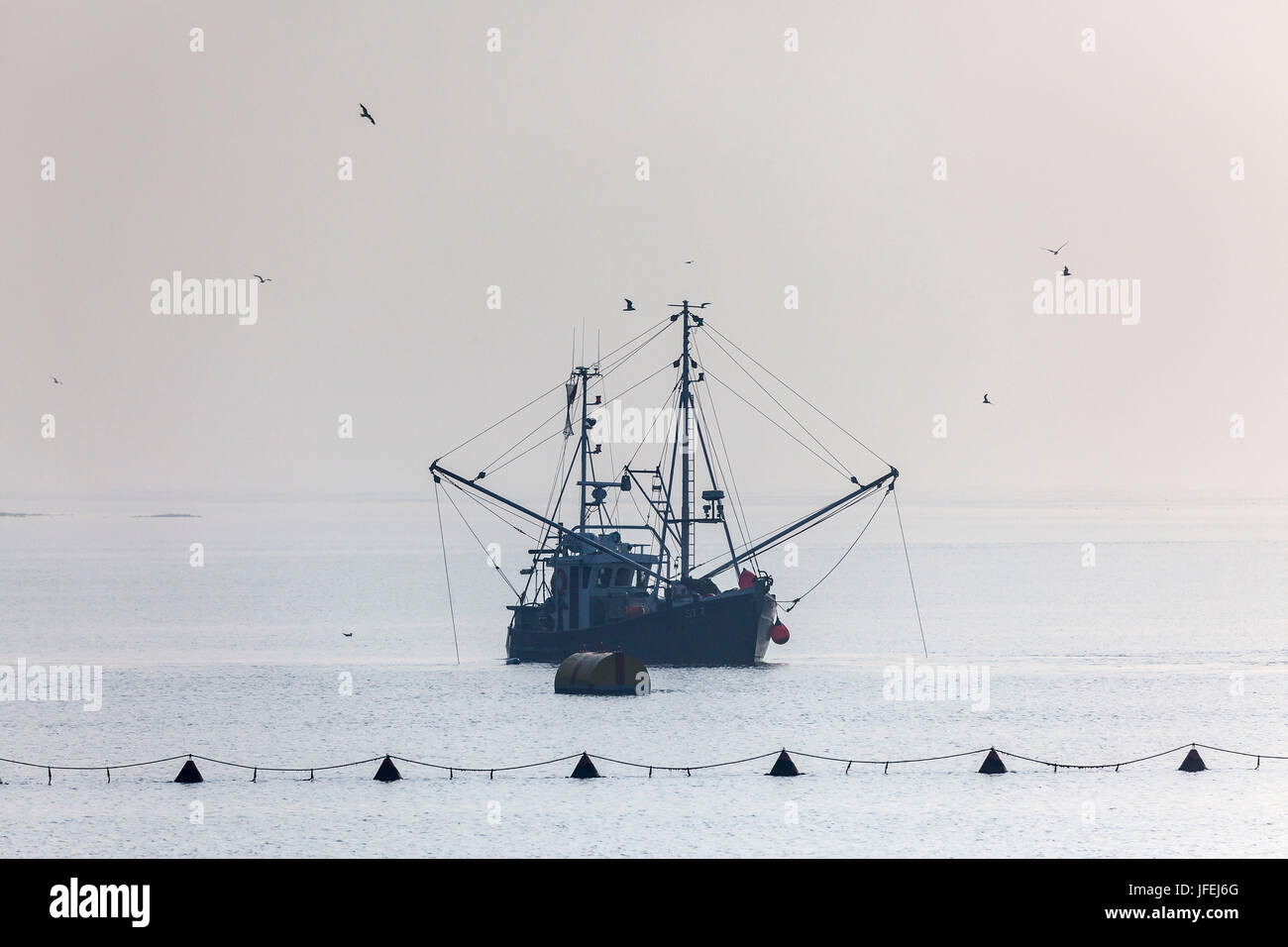 Crab cutters on the North Sea near Büsum, Ditmarsh, Schleswig - Holstein, North Germany, Germany - Stock Image