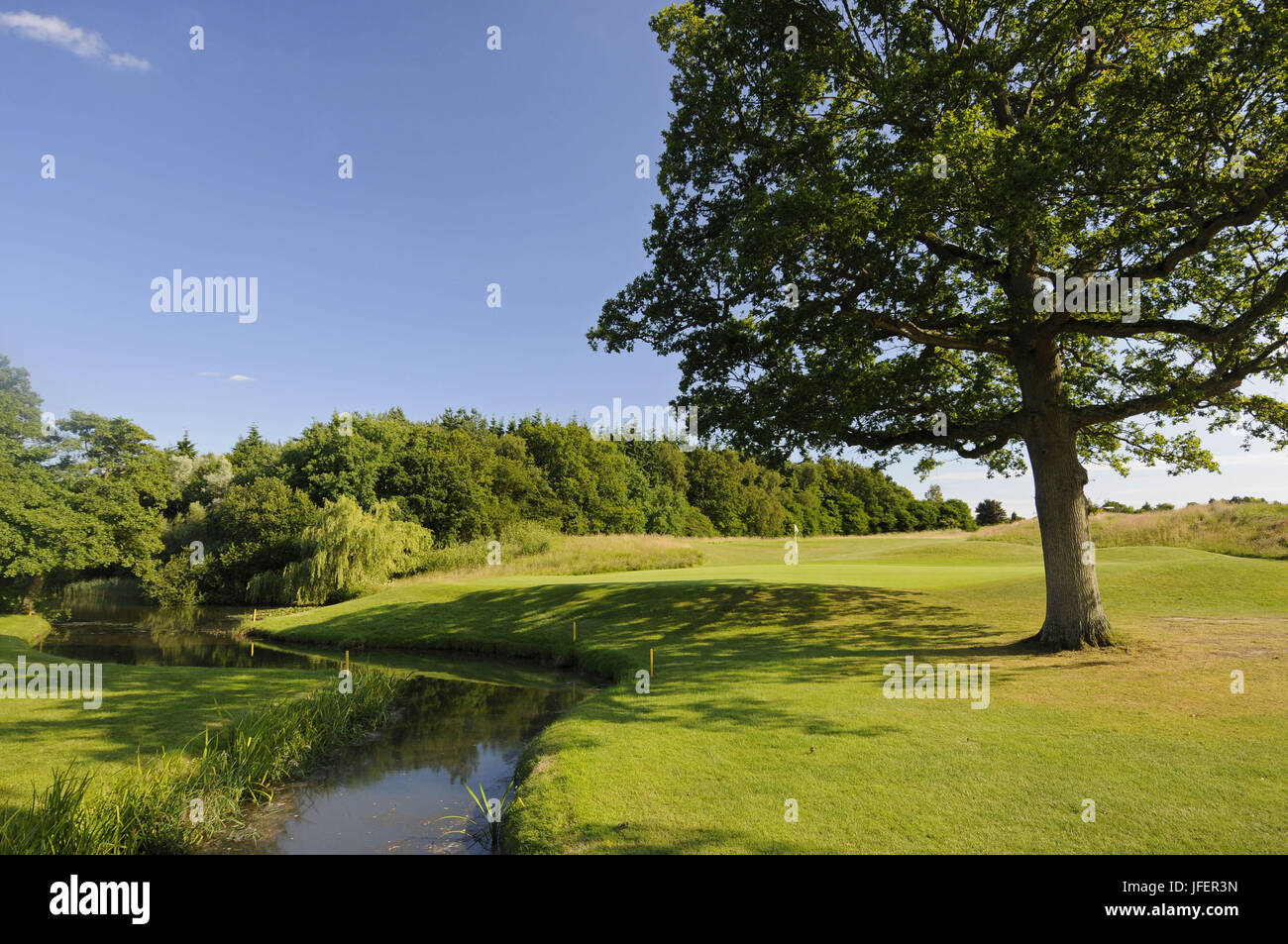 View of the Green on the 10th Hole on the East Course with a stream in front, East Sussex National East Sussex England - Stock Image