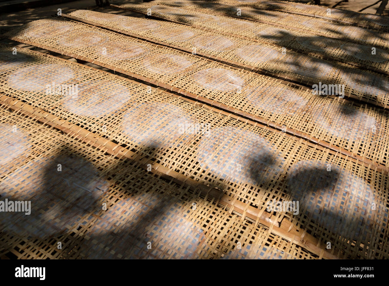 Handmade rice paper wrappers drying in the sun in Vietnam, Asia - Stock Image
