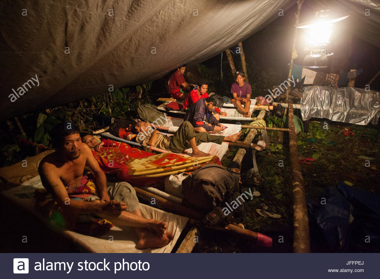 Dayak guides relax on their hammocks inside a research camp tent during a rainforest expedition. - Stock Image