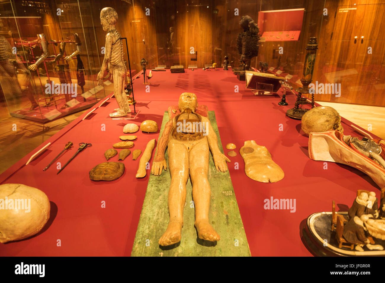England, London, The Wellcome Collection, Exhibit of German Anatomical Wooden Figure dated 1700 - Stock Image