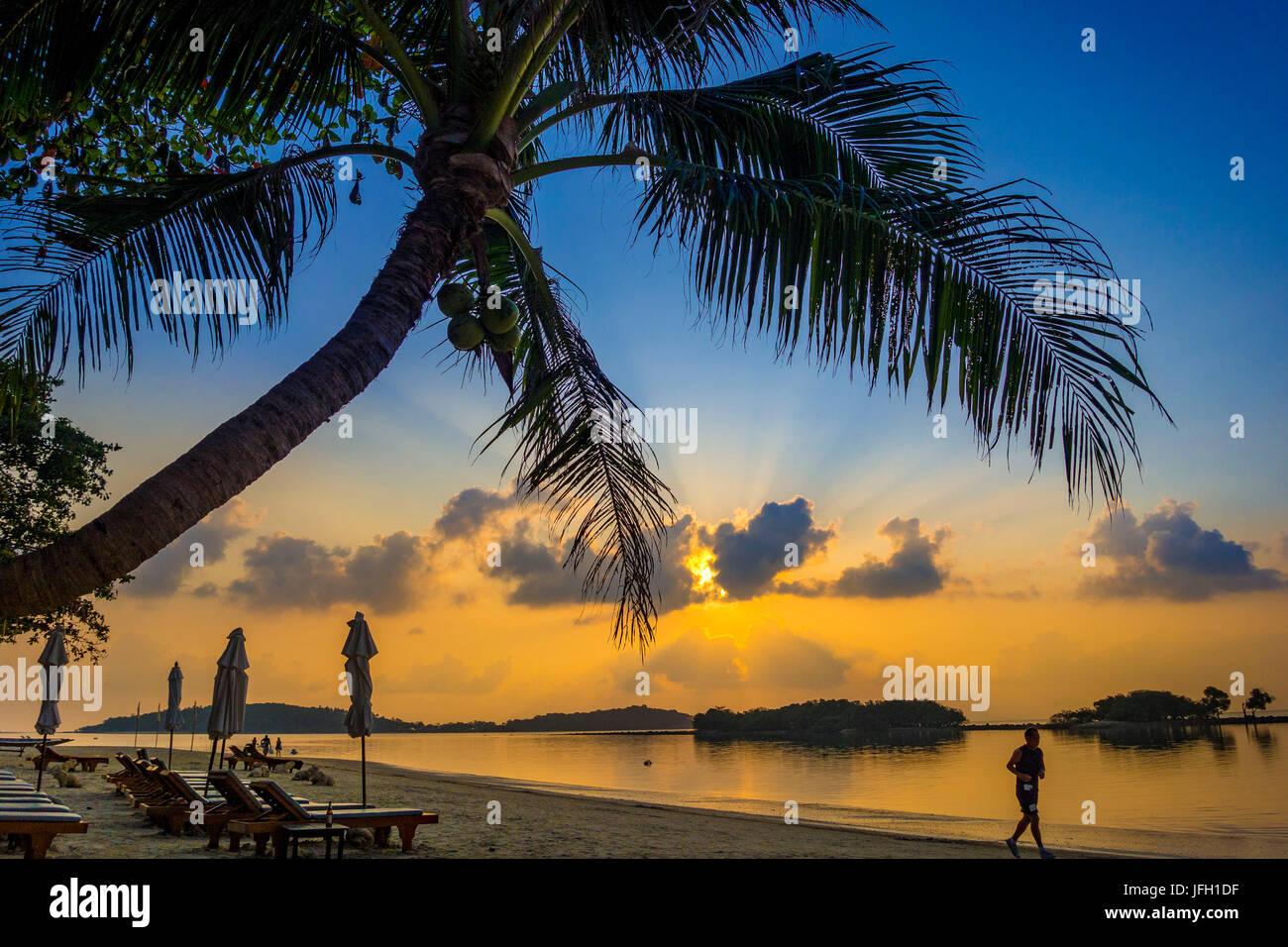 Deck chairs on the beach wait for tourist, Chaweng Beach, island Ko Samui, Thailand, Asia - Stock Image