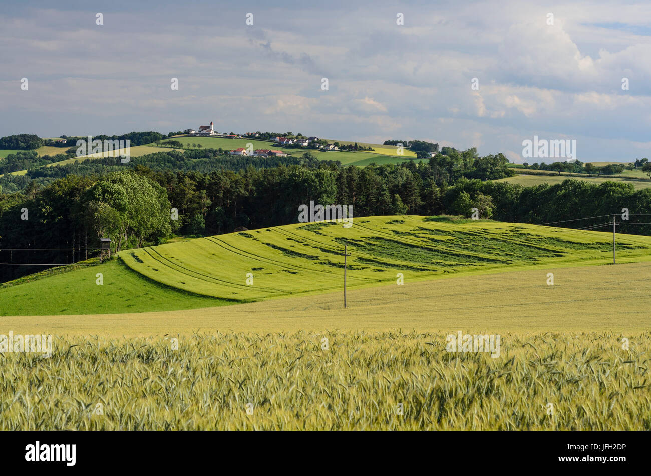 Military church and pilgrimage church St. Anna (hunchbacked world), Austria, Lower Austria, Viennese alps, Wiesmath - Stock Image