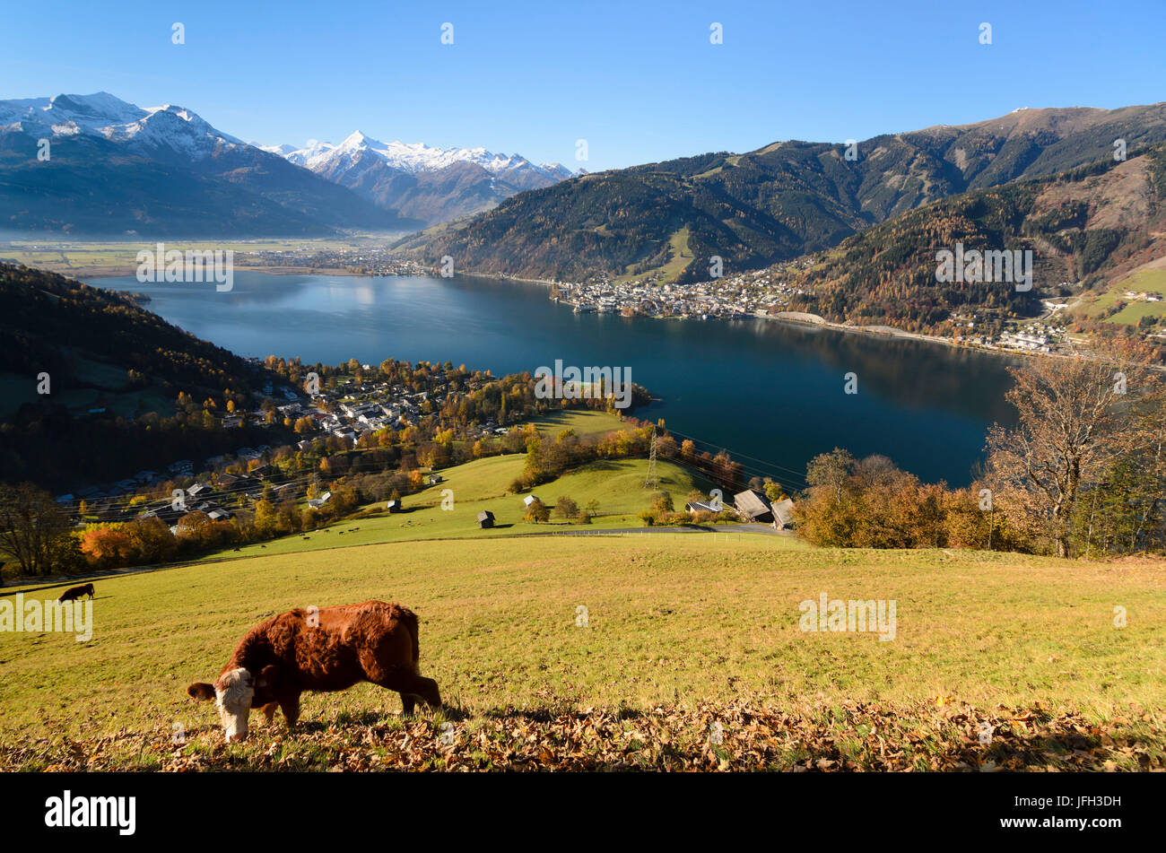 Zeller See (lake) with view at Zell am See and Hohe Tauern, Austria, Salzburg, Pinzgau, Stock Photo