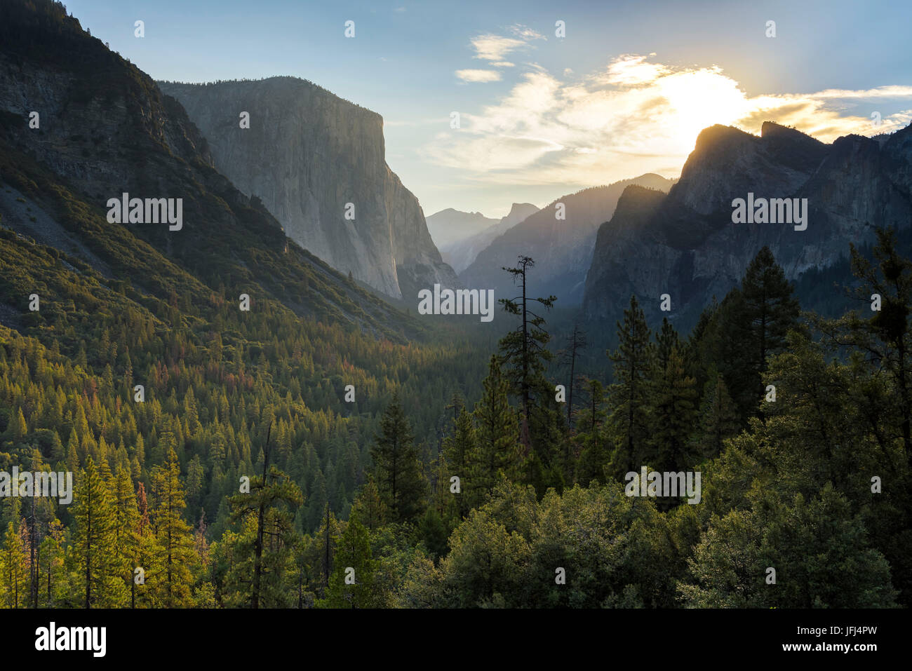 View in the Yosemite Valley, the USA, California Stock Photo