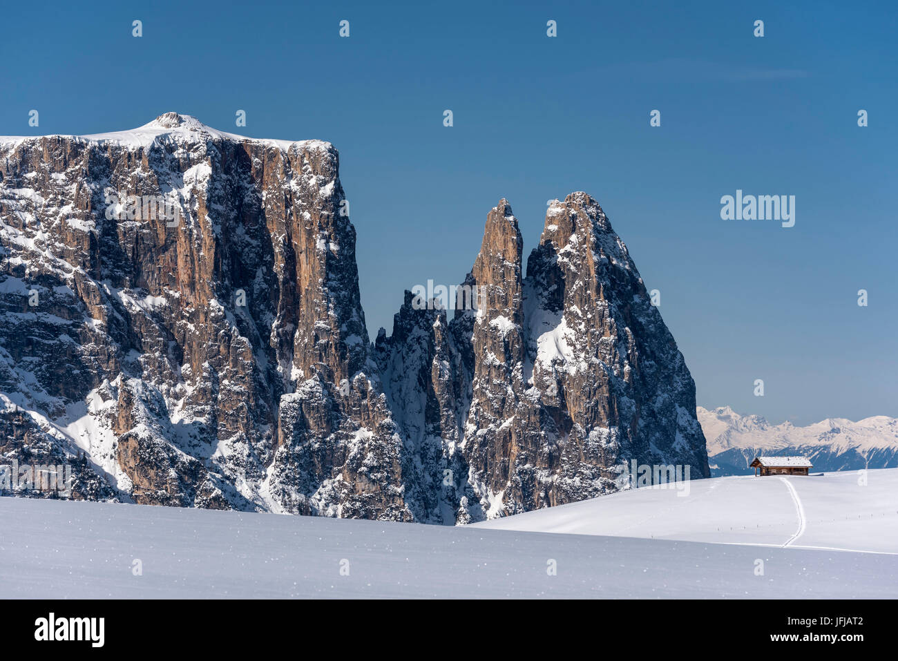 Alpe di Siusi/Seiser Alm, Dolomites, South Tyrol, Italy, Winter landscape on the Alpe di Siusi/Seiser Alm with the Stock Photo