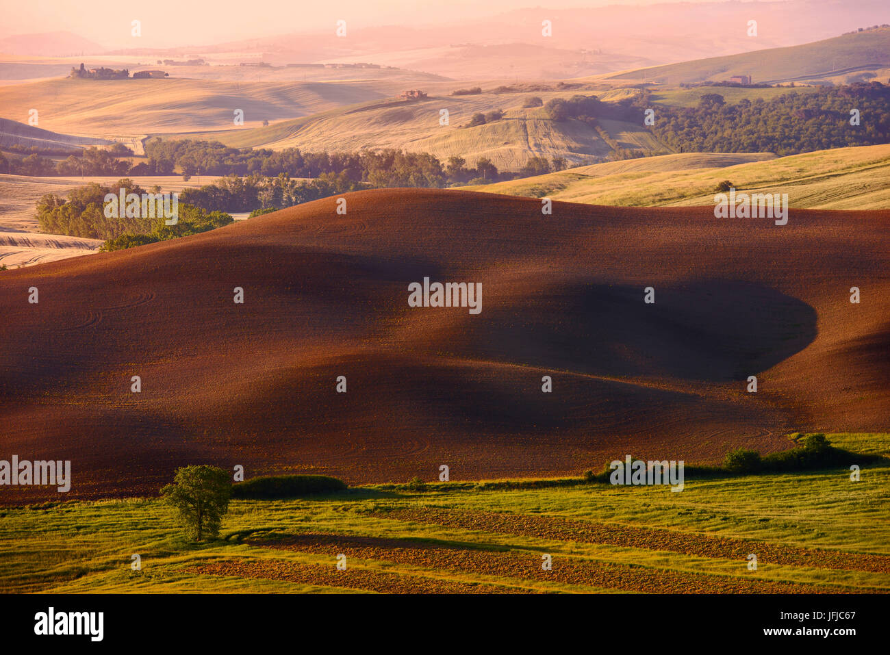 Italy, Tuscany, Siena District, Orcia Valley - fallow field Stock Photo