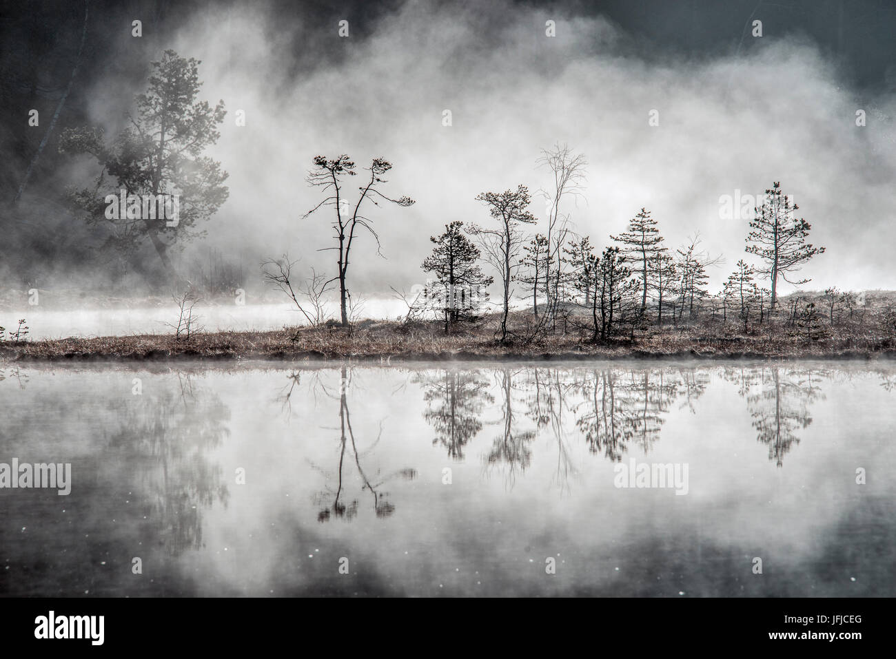 Typical mists of spring at Pian di Gembro, Aprica, Valcamonica, Valtellina, Lombardy, Italy, Europe - Stock Image