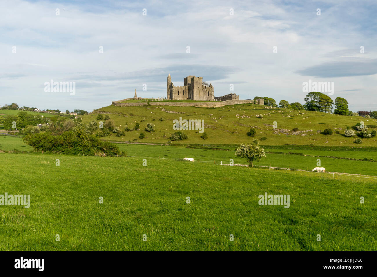 Rock of Cashel, Cashel, Co, Tipperary, Munster, Ireland, Europe, - Stock Image