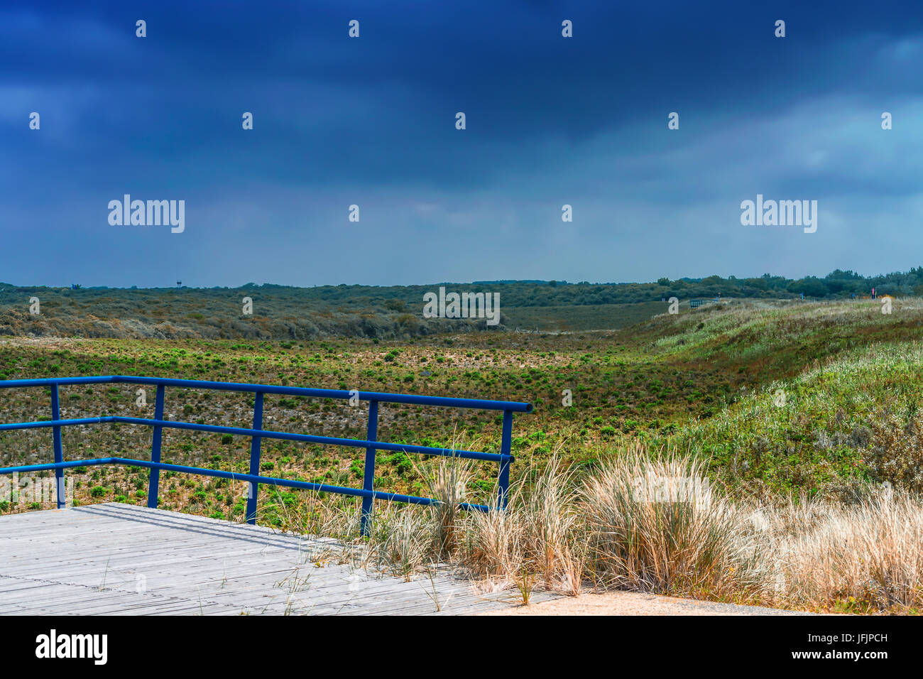 Dunes Panorama on the North Sea coast in Holland - Stock Image