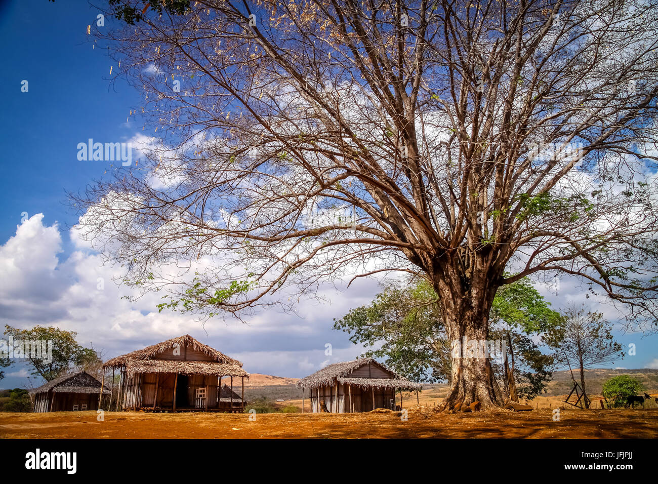 Small malagasy village - Stock Image