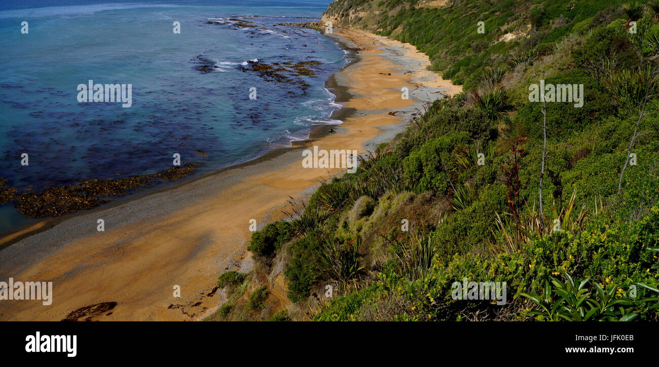 Bushy Beach,New Zealand - Stock Image