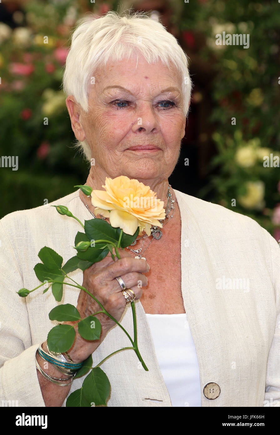 May 22, 2017 - Judi Dench attending Chelsea Flower Show 2017 Press Day, Royal Hospital Chelsea  in London, England, - Stock Image
