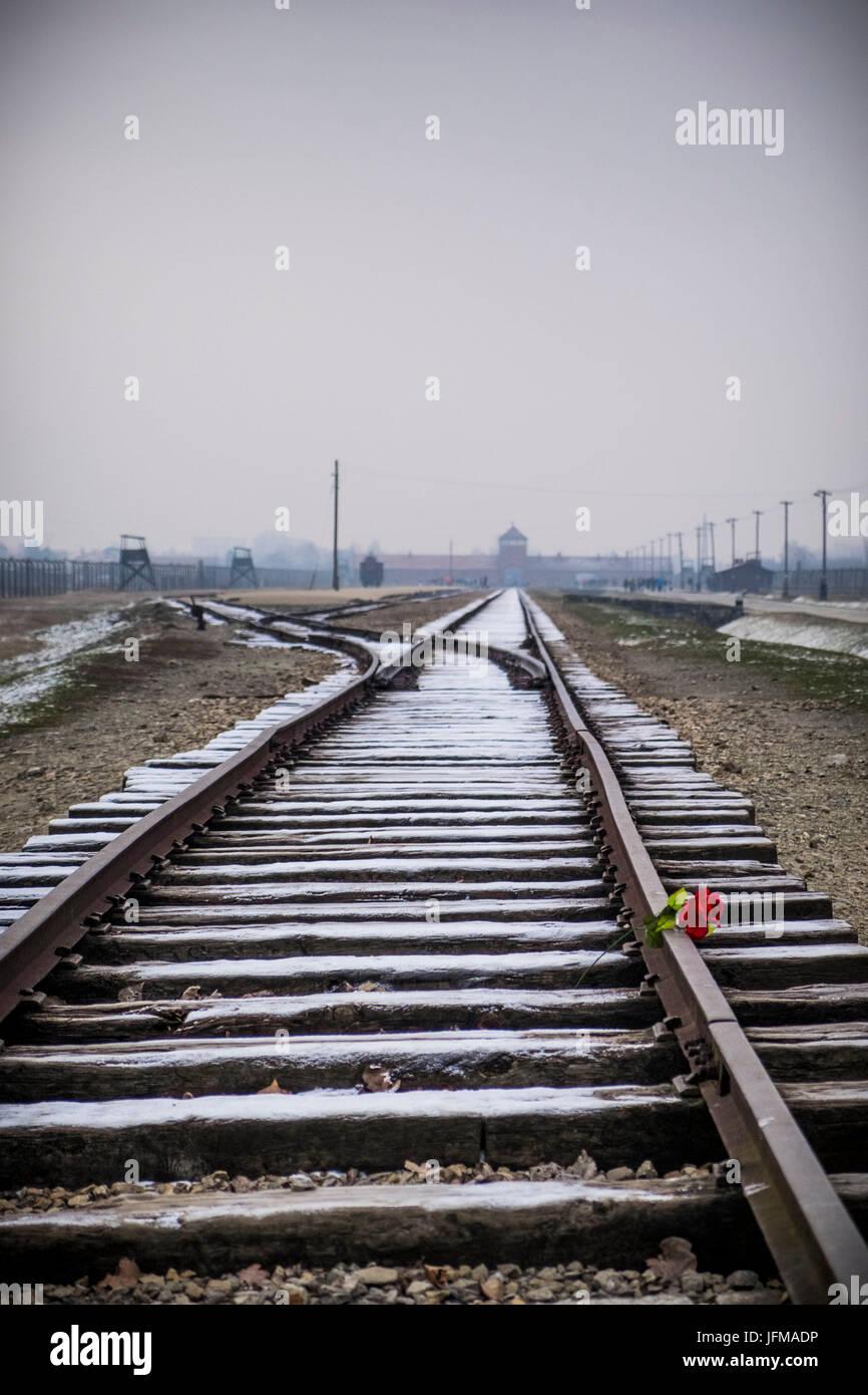 Auschwitz, Oswiecim, Birkenau, Brzezinka, Poland, North East Europe, Railroad in nazi extermination camp, - Stock Image