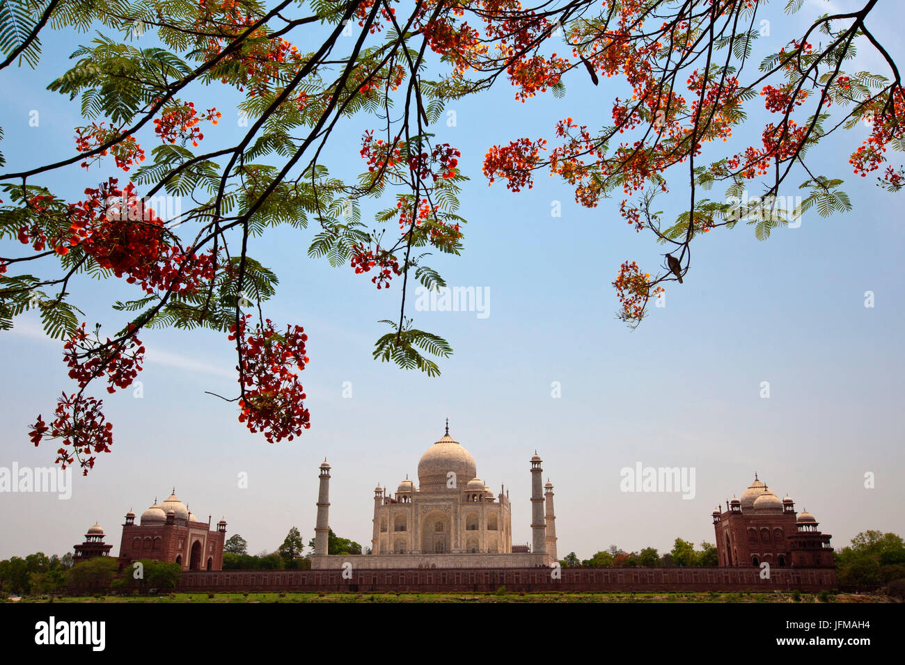 The magnificent Taj Mahal is one of the Seven Wonders of the World and is one UNESCO World Heritage Site, It is - Stock Image