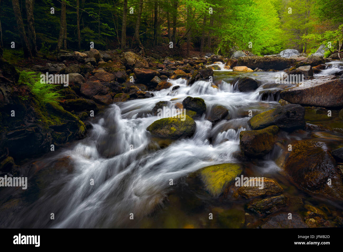 Aspromonte National Park, Gambarie, Reggio Calabria, Calabria, Italy, Menta waterscape - Stock Image
