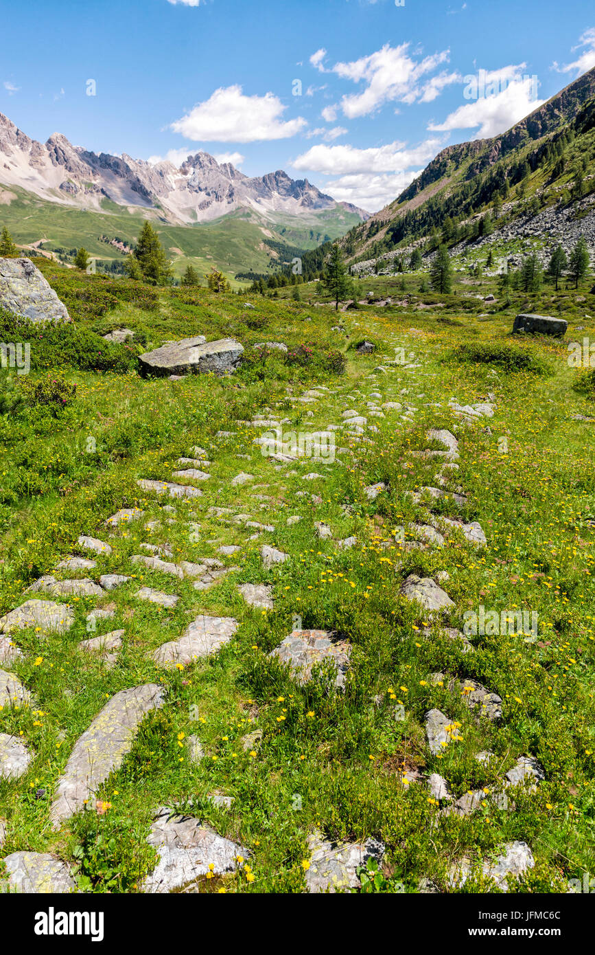 Italy, Trentino Alto Adige, San Pellegrino Pass, the landscape that can be seen from the path 628 to the cimon, Stock Photo