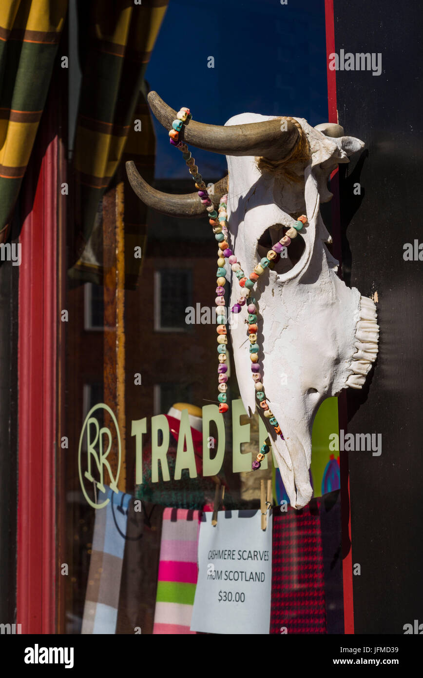 USA, Massachusetts, Newburyport, Middle Street, storefront with cow's head - Stock Image