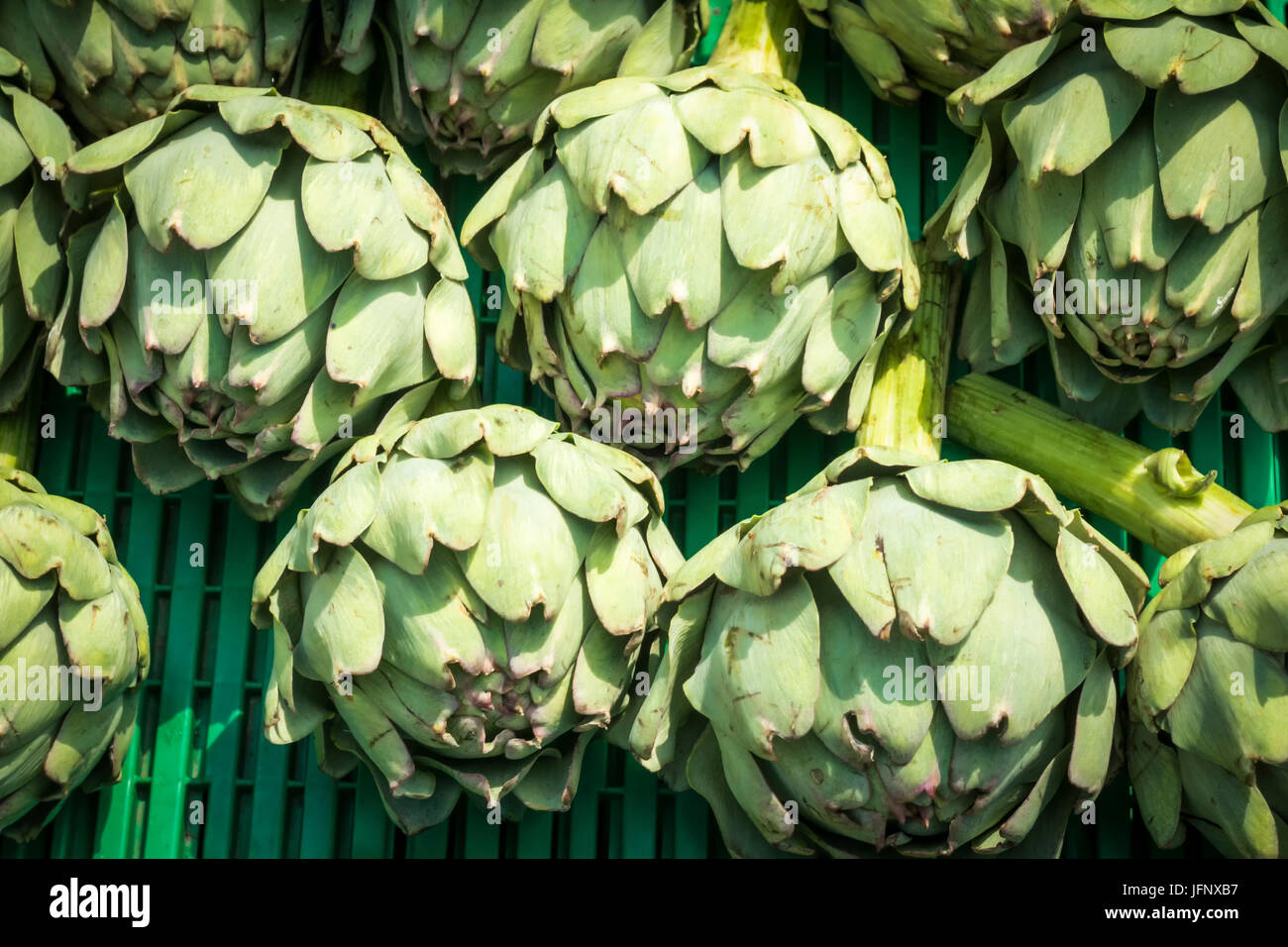 Artichokes on a market stall - Stock Image