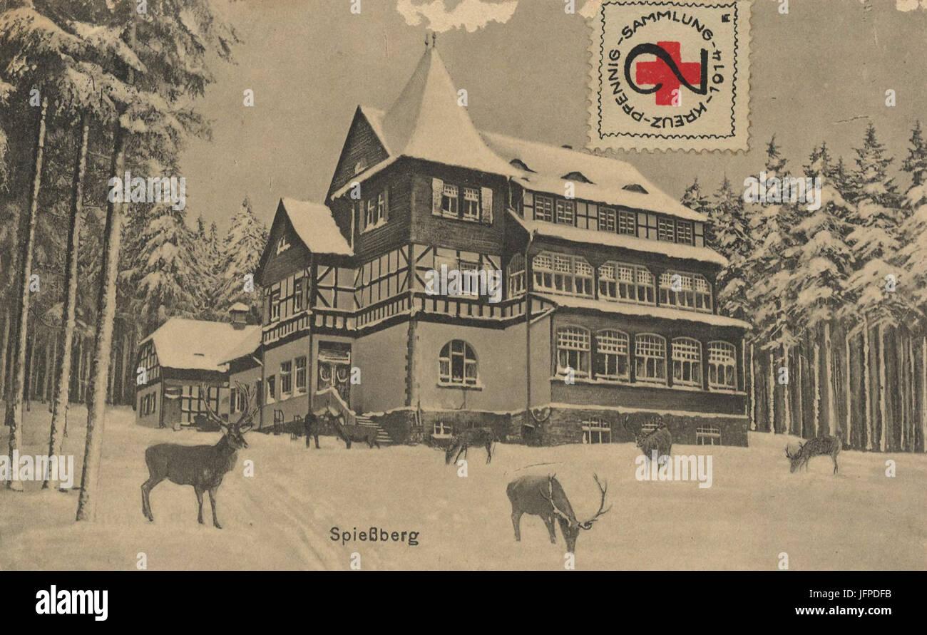 AK Friedrichroda, Wildfütterung am Spießberghaus (um 1910) Stock Photo