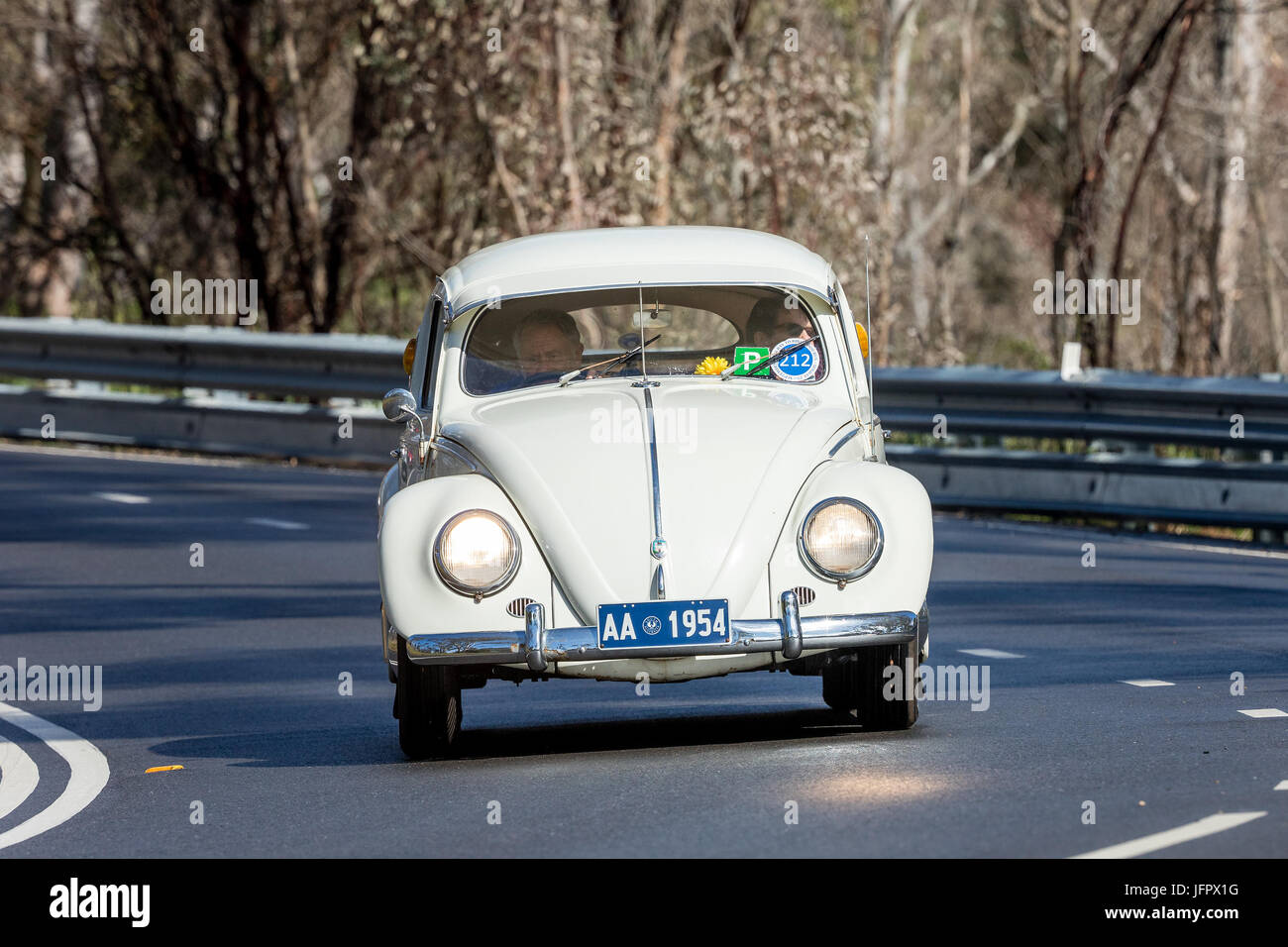Vintage 1954 Volkswagen Type 1 sedan driving on country roads near the town of Birdwood, South Australia. - Stock Image