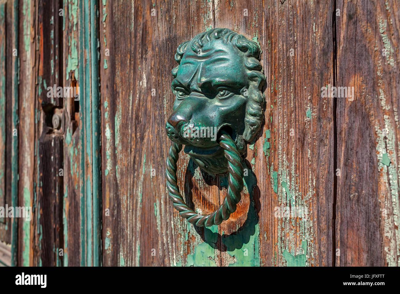 Bronze metal doorknob in the shape of lion head on old wooden door. - Stock Image