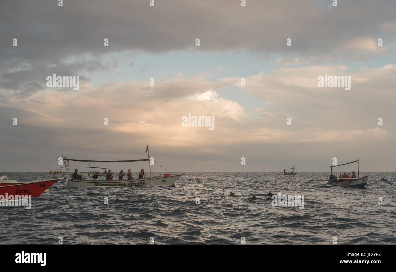 Bali Indonesia free Dolphin boat Watching at Lovina Beach - Stock Image