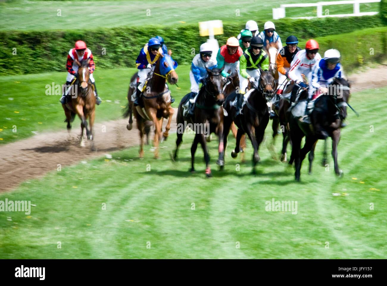 steeplechase horse race Stock Photo
