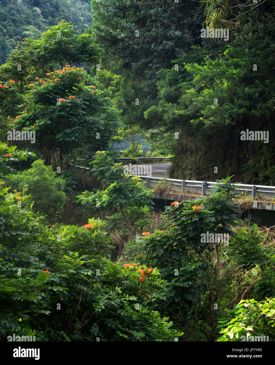 Road to Hana. Maui, Hawaii Stock Photo